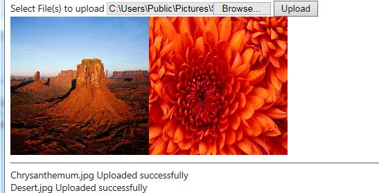 Multiple File Upload - Screenshot