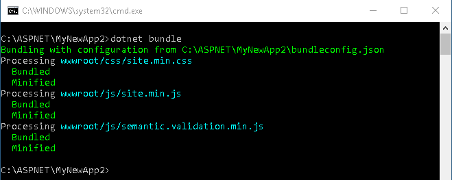 Bundle and Minification completed with dotnet bundle command