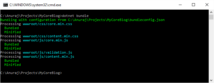 dotnet bundle command running