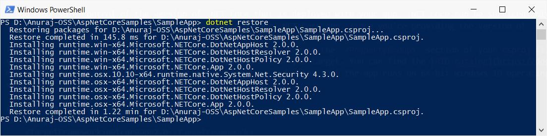 dotnet restore command output