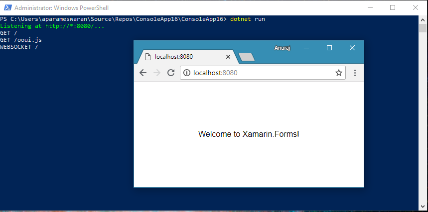 Ooui Xamarin forms running on Console app